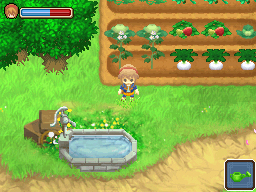 It just wouldn't be Harvest Moon without turnips...